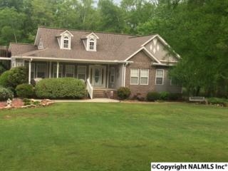 314 Star Point Road, Guntersville, AL 35976 (MLS #1069595) :: Amanda Howard Real Estate