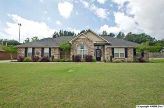 25312 Hudson Bend, Athens, AL 35613 (MLS #1069709) :: Amanda Howard Real Estate
