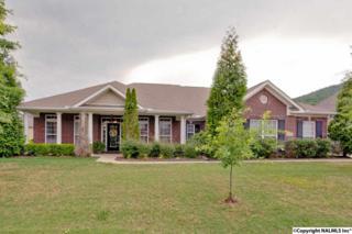3104 Mossy Rock Road, Owens Cross Roads, AL 35763 (MLS #1069724) :: Amanda Howard Real Estate