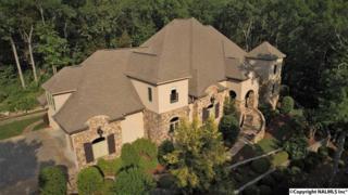 2605 Grande Woods Drive, Hampton Cove, AL 35763 (MLS #1069761) :: Amanda Howard Real Estate
