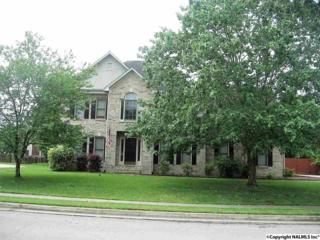 2720 Whistler Lane, Hampton Cove, AL 35763 (MLS #1069768) :: Amanda Howard Real Estate