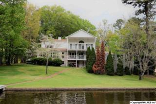 4117 Morrow Street, Guntersville, AL 35976 (MLS #1069809) :: Amanda Howard Real Estate