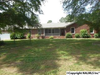 123 Pattiwood Drive, Hazel Green, AL 35750 (MLS #1069869) :: Amanda Howard Real Estate