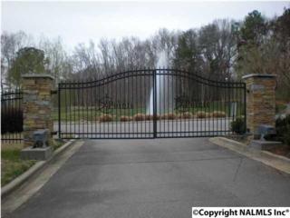 Lot 34 Marina Drive, Athens, AL 35611 (MLS #1069896) :: Amanda Howard Real Estate