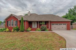 118 Forrest Lane, Meridianville, AL 35759 (MLS #1069915) :: Amanda Howard Real Estate