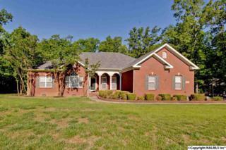 258 Toney Acres Drive, Toney, AL 35773 (MLS #1069919) :: Amanda Howard Real Estate