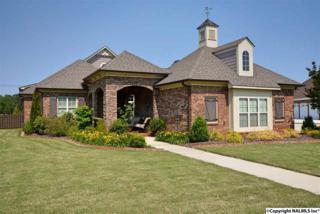 313 Atwater Drive, Madison, AL 35756 (MLS #1068775) :: Amanda Howard Real Estate