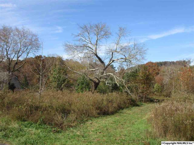 County Road 622, Valley Head, AL 35989 (MLS #1107106) :: Intero Real Estate Services Huntsville