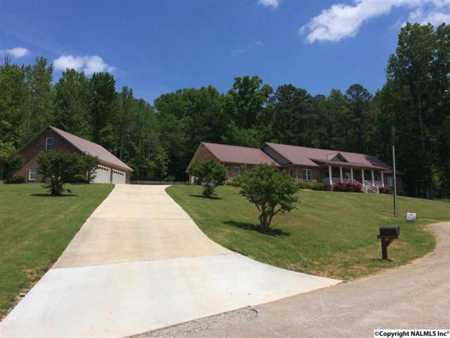 105 Seneca Lane, Gurley, AL 35748 (MLS #1060899) :: Amanda Howard Real Estate™