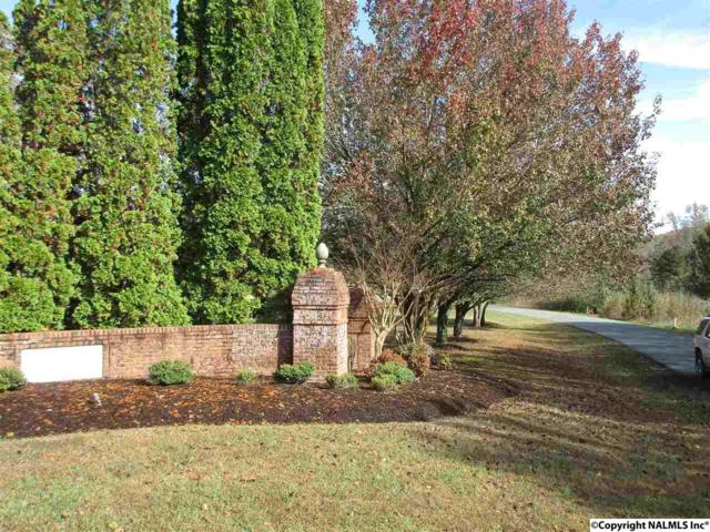 County Road 622, Valley Head, AL 35989 (MLS #1107106) :: Legend Realty