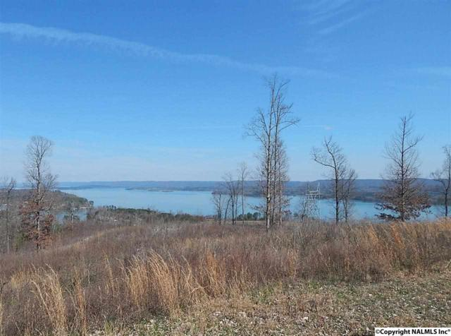 2 Keene Point Drive, Grant, AL 35747 (MLS #1015341) :: Capstone Realty