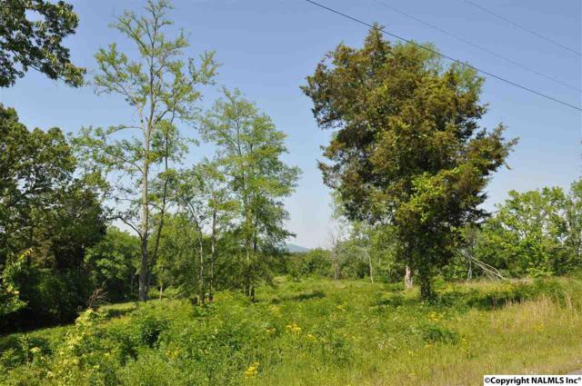 0 Ryan Road, Hollywood, AL 35752 (MLS #1019025) :: Amanda Howard Real Estate™