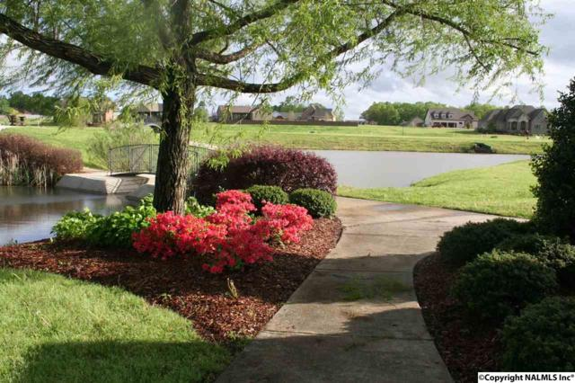 17495 Spring View Drive, Athens, AL 35611 (MLS #1019749) :: RE/MAX Alliance
