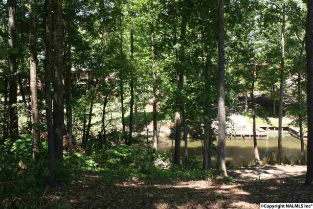 0 Indian Pine Trace, Gadsden, AL 35901 (MLS #1020578) :: Amanda Howard Real Estate™
