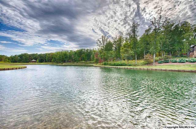 5 Spring Haven Circle, Huntsville, AL 35803 (MLS #1020734) :: Southern Shade Realty