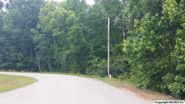 116 Comfort Drive, Hazel Green, AL 35750 (MLS #1021280) :: Amanda Howard Real Estate™