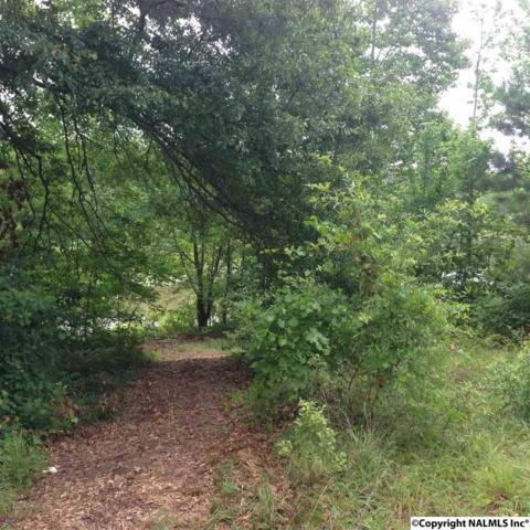0 Murray Drive, Gadsden, AL 35903 (MLS #1023320) :: RE/MAX Alliance