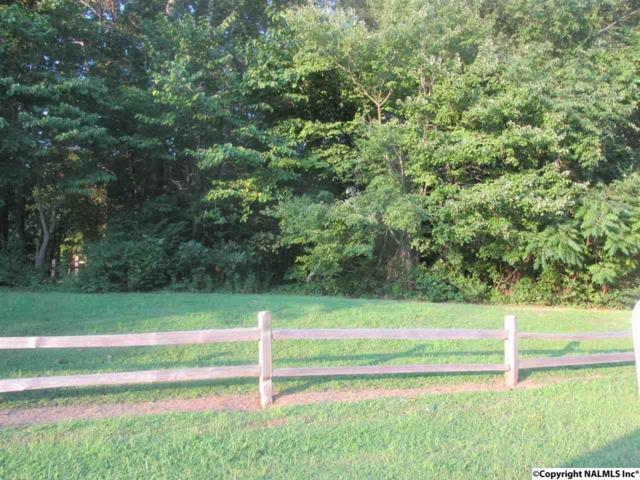 2599 Buckhaven Drive, Southside, AL 35907 (MLS #1024624) :: Amanda Howard Sotheby's International Realty
