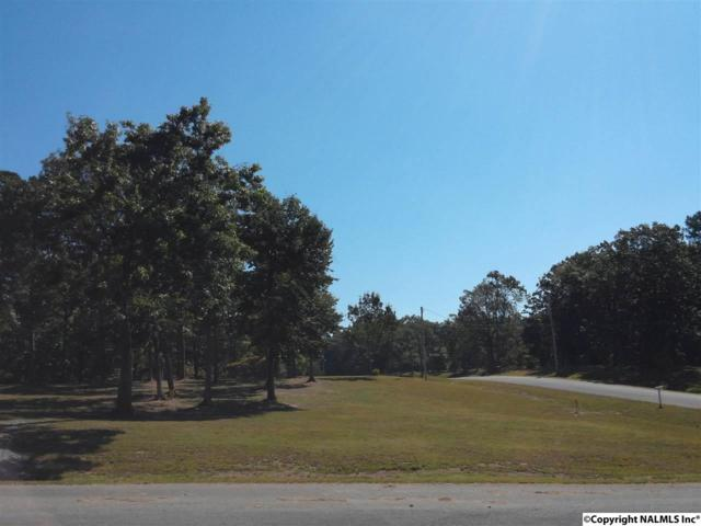 159 Ridgecreek Drive, Gurley, AL 35748 (MLS #1029405) :: RE/MAX Alliance
