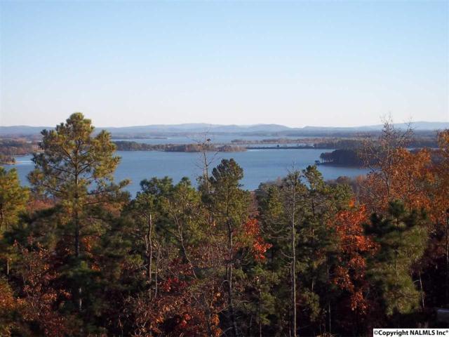 Highland Trail, Cedar Bluff, AL 35959 (MLS #1029756) :: Amanda Howard Real Estate™