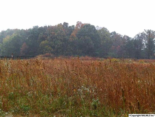 15 Union Grove Road, Guntersville, AL 35976 (MLS #1031749) :: Amanda Howard Sotheby's International Realty