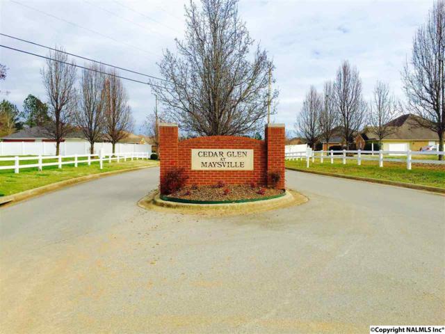 231 Magnolia Glen Drive, Huntsville, AL 35811 (MLS #1036765) :: Amanda Howard Real Estate™