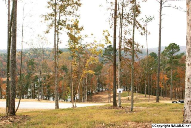 34 Rock Creek Penninsula, Arley, AL 35541 (MLS #1038310) :: RE/MAX Alliance