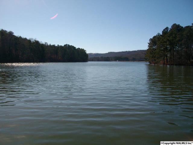 94 Fides Way, Scottsboro, AL 35769 (MLS #1041270) :: Amanda Howard Real Estate™