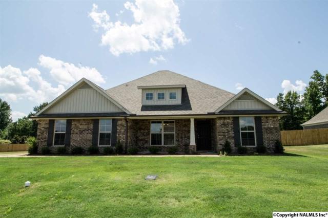 159 Lyons Road, Owens Cross Roads, AL 35763 (MLS #1042457) :: Amanda Howard Real Estate™
