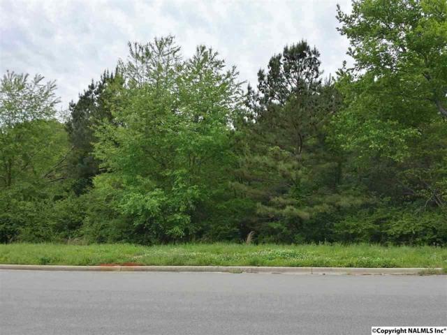 Lot 1 Sunnyview Drive, Huntsville, AL 35811 (MLS #1043073) :: Legend Realty