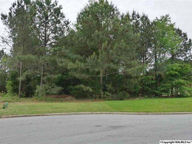 Lot 10 Old Orchard Drive, Huntsville, AL 35811 (MLS #1043081) :: Legend Realty
