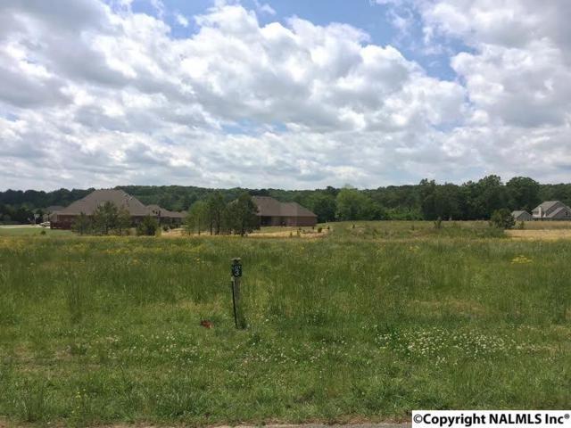3425 S Chapel Hill Road Lot 2, Decatur, AL 35603 (MLS #1043821) :: Amanda Howard Real Estate™
