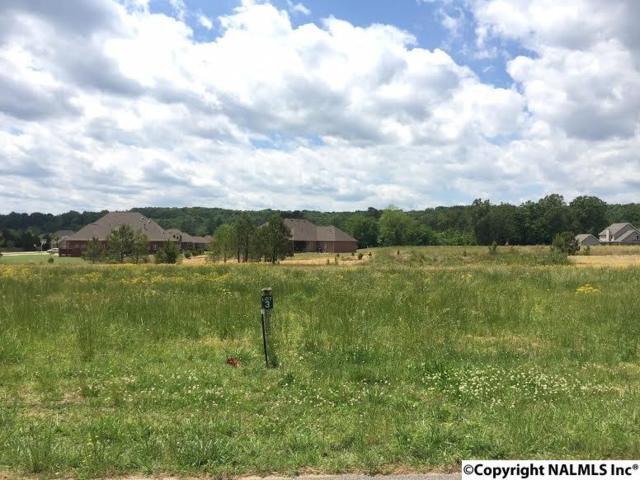 3429 S Chapel Hill Road Lot 3, Decatur, AL 35603 (MLS #1043822) :: Amanda Howard Real Estate™