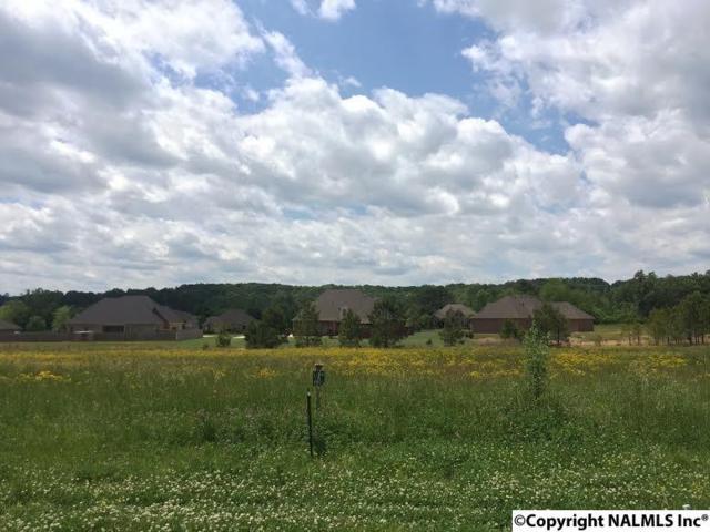 3433 S Chapel Hill Road Lot 4, Decatur, AL 35603 (MLS #1043823) :: Amanda Howard Real Estate™