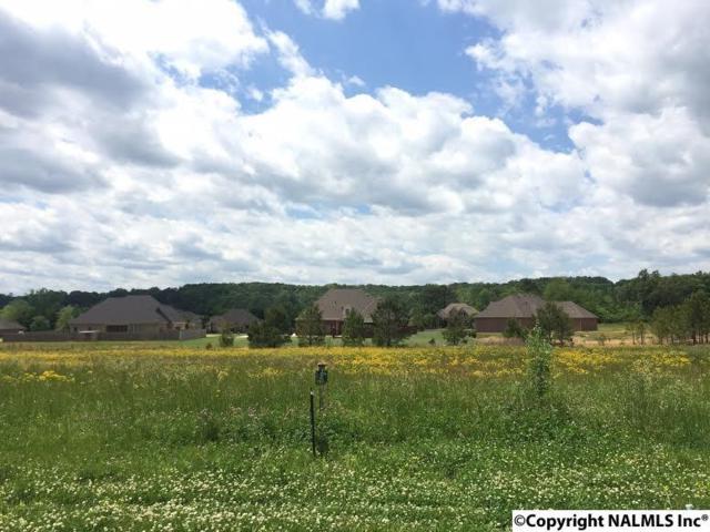 3437 S Chapel Hill Road Lot 5, Decatur, AL 35603 (MLS #1043824) :: Amanda Howard Real Estate™