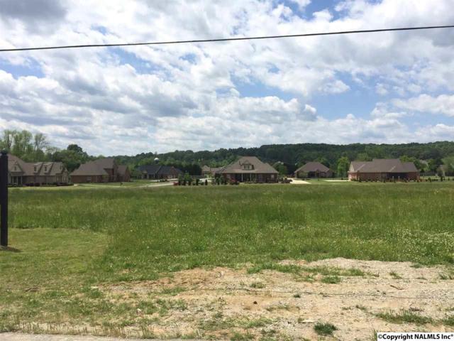 3449 S Chapel Hill Road Lot 8, Decatur, AL 35603 (MLS #1043827) :: Amanda Howard Real Estate™