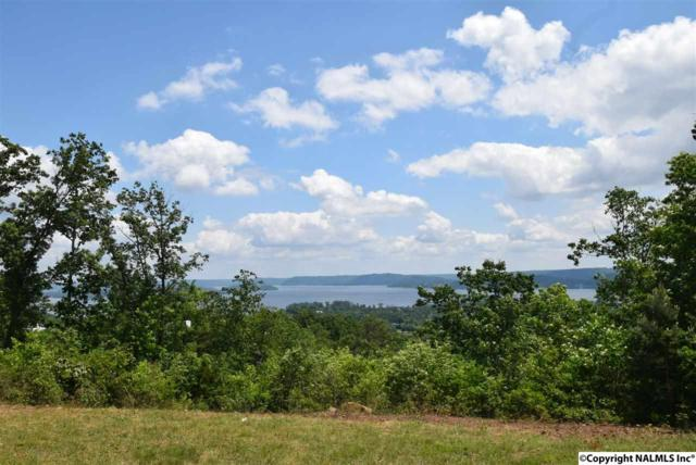 177 Legendary Drive, Guntersville, AL 35976 (MLS #1043927) :: RE/MAX Alliance