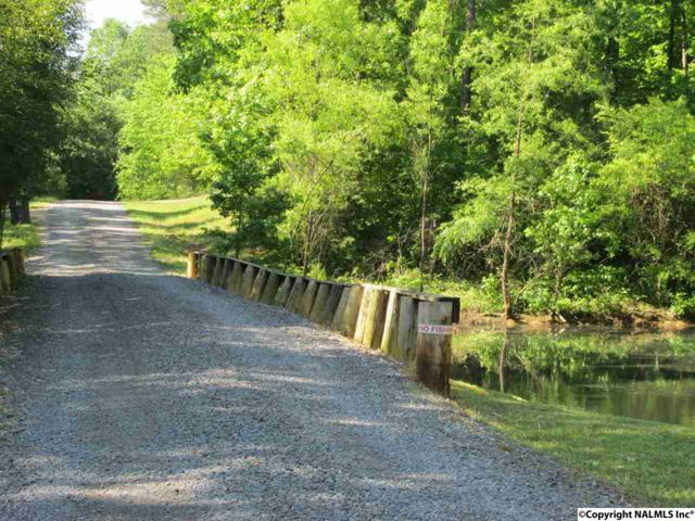 Road 9078, Fort Payne, AL 35967 (MLS #1044194) :: Amanda Howard Sotheby's International Realty