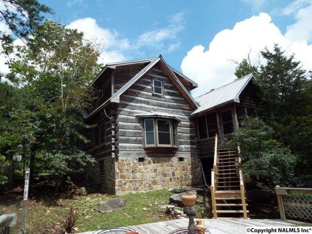984 County Road 613, Mentone, AL 35984 (MLS #1052152) :: Amanda Howard Real Estate™