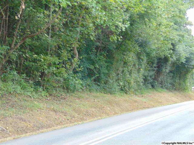 0 Willow Beach Road, Guntersville, AL 35976 (MLS #1052570) :: Amanda Howard Real Estate™