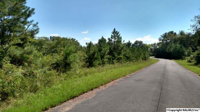 Lot 107 Drew Drive, Hollywood, AL 35752 (MLS #1052779) :: LocAL Realty