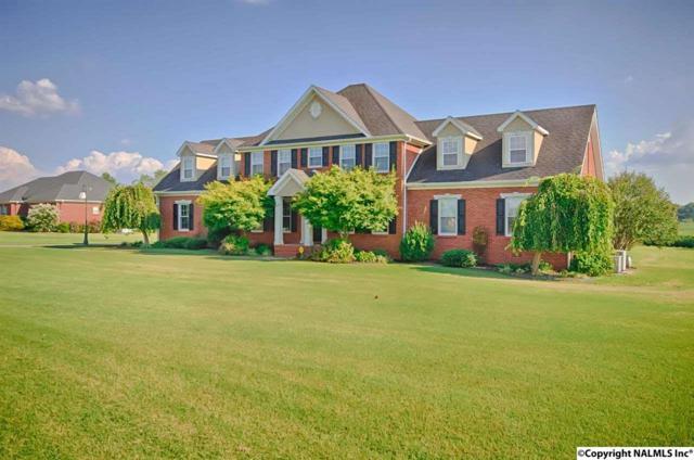 24636 Craft Road, Athens, AL 35613 (MLS #1052993) :: Amanda Howard Real Estate