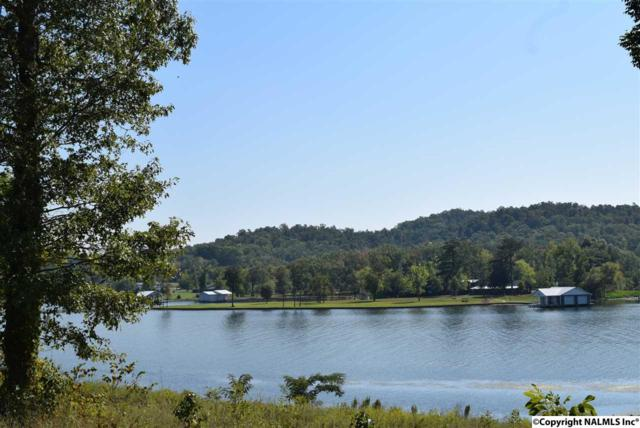 142 Polaris Drive, Guntersville, AL 35976 (MLS #1054239) :: Amanda Howard Sotheby's International Realty