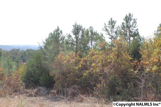 Lot 16 North Hillside Drive, Fort Payne, AL 35967 (MLS #1056369) :: Amanda Howard Sotheby's International Realty