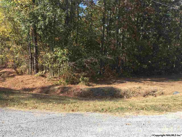 6 County Road 461, Centre, AL 35960 (MLS #1056464) :: Weiss Lake Alabama Real Estate