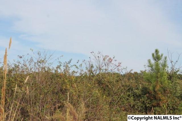 Lot 1 Hillside Drive, Fort Payne, AL 35967 (MLS #1056515) :: Amanda Howard Sotheby's International Realty