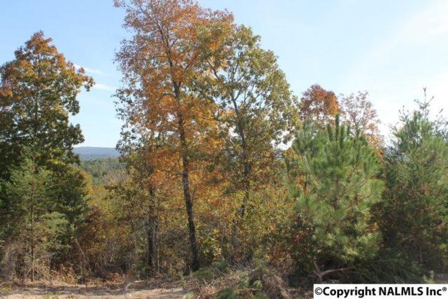 Lot 5 Hillside Drive, Fort Payne, AL 35967 (MLS #1056533) :: Amanda Howard Sotheby's International Realty