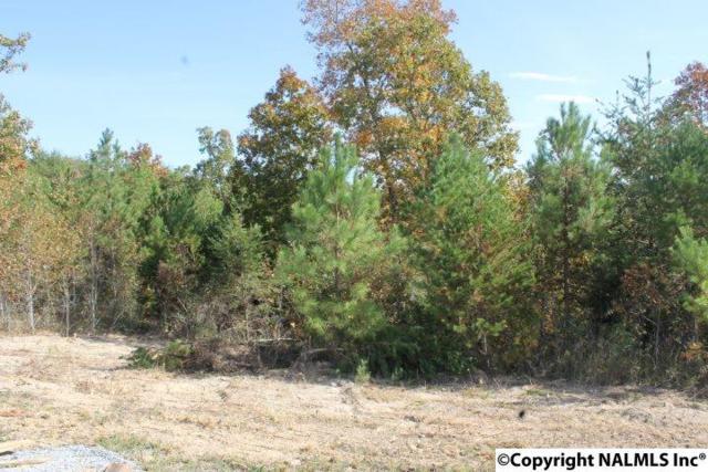 Lot 11 Hillside Drive, Fort Payne, AL 35967 (MLS #1056544) :: Amanda Howard Real Estate™