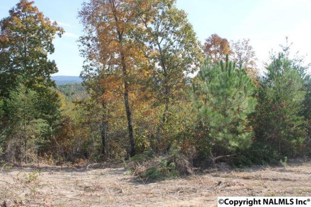 Lot 12 Hillside Drive, Fort Payne, AL 35967 (MLS #1056546) :: Amanda Howard Real Estate™