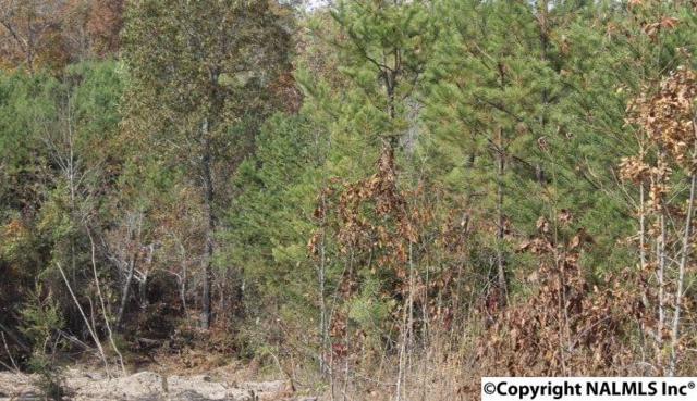 Lot 10 Landon Lane, Fort Payne, AL 35967 (MLS #1056957) :: Amanda Howard Real Estate™